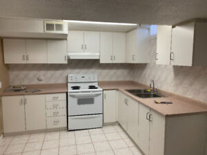 Used kitchen cabinets and sink