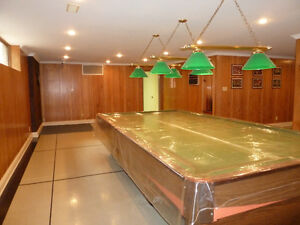 Snooker/pool table+Green lamps+Dart+Score board+TVrack+Partition