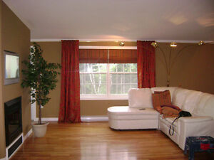 drapes and coordinating blinds
