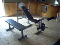 Exercise weight bench and weights