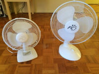 Two clean fans in perfect conditions