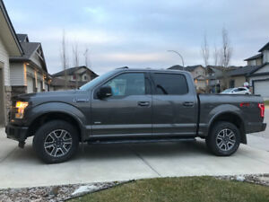 2015 XLT F-150 4x4 Supercrew