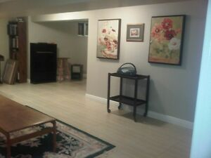 Spacious basement apartment