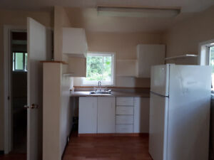 Bright 1 Bedroom + Den Cobble Hill Cottage for Rent