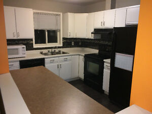 Newly renovated 2 bed 2 bath Condo walking distance to the U of