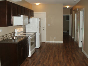 Top or Bottom 2 Bedroom Suite for Rent