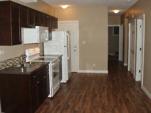 Top or Bottom 2 Bedroom Suite for Rent