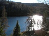 Vive l'été!! Grand chalet a louer sur lac St-Adolphe Laurentides