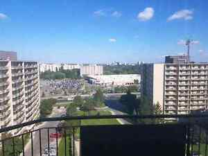 STILL LOOKING!!! Roommate wanted for a 1 bedroom apartment!!!  London Ontario image 8