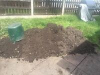 Free soil Trafford