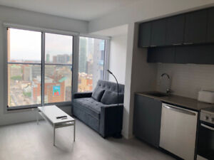 1 Bed Downtown Furnished Condo Dundas/Jarvis