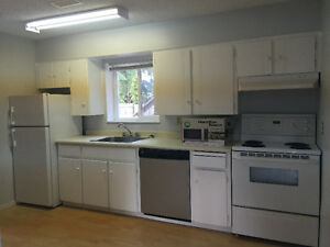 Newly Renovated, 1 bedroom Suite, Groud Level, Burquitlam