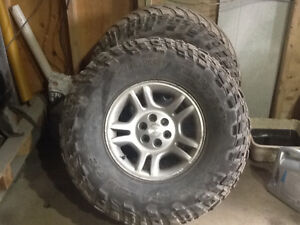"35"" Miki Thompson tires and rims"