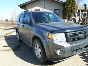 2010 Escape XLT Loaded SUV