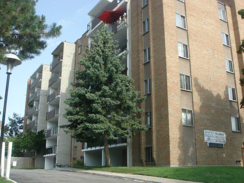 Walk To University Everything Included Renovated Apartments 2 Bedroom Windsor Region