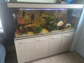 5ft 450 litre fish tank aquarium