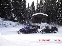 camp de chasse et peche en bois rond,truites orignal