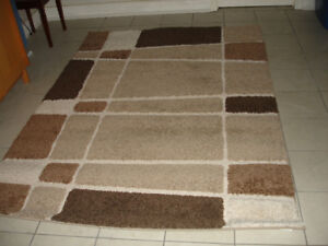 Multi-color shag rug in excellent condition
