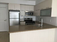 big brand new 3 1/2 for rent downtown Montreal
