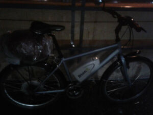 Electric bion s specialized