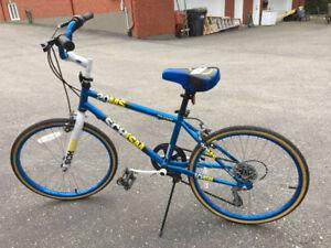 Vélo 20 pouces pour garçon