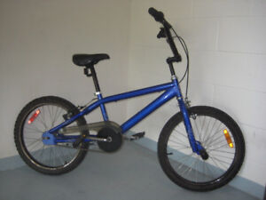 20'' BIKE LEAP bmx series,pegs on front wheel clean tuned up