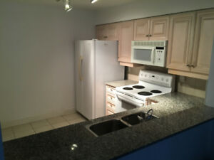 KITCHEN CABINETS with matching APPLIANCES-used