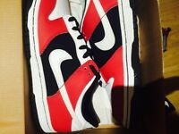 Nike Dunk Low GS Size 5.5