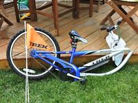 Trek Mountain Train 201 Trail-a-bike