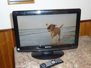 19 Inch LCD TV With Built In DVD Player