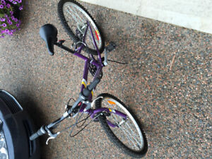 Bike for 10-14 Year-old Female 24""