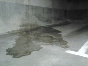 REPAIR INFILTRATION WATER BEST PRICES GUARANTEE 438-831-2325 West Island Greater Montréal image 2