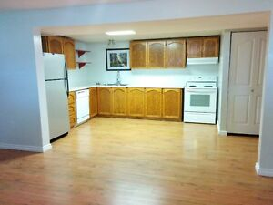 Large 1100sq'  basement suite in BX