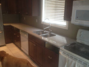 Quartz Kitchen and Bathroom Countertops Sale!! Stratford Kitchener Area image 3