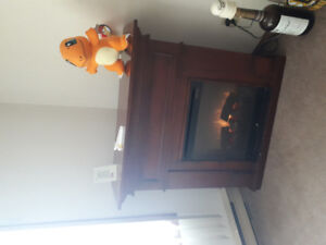 Fireplace, good condition, rarely used. Heat works
