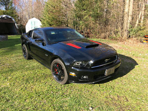 2013 Ford Mustang GT 6 speed manual