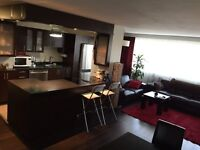 Fully renovated large 3.5 condo with amazing view