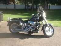 2006 Harley Fatboy Soft Tail