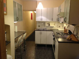 Single room, great house,Town centre location