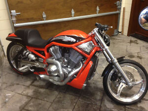 VRXSE Screamin' Eagle V-Rod Destroyer NEUVE/NEW DRAG BIKE