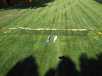 Back Yard Volley Ball and Badminton Net and 6 birdies