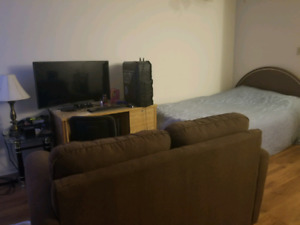 Furnished Bachelor Apartment for Sublet in South End