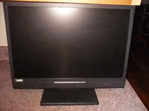 "22"" widescreen monitor"