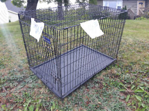 Dog cage first come first served