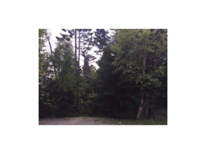 Ocean View treed lot just under a half acre, located in Milton.