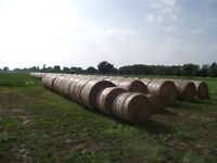 Hay for sale 1st cut round of alfalfa