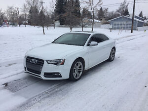 RARE, 6 Speed Manual 2013 Audi S5 Coupe (2 door)