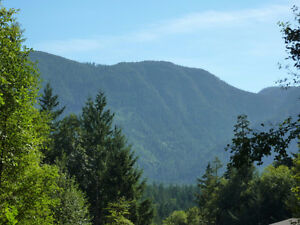Incredible forested land with beautiful mountain views