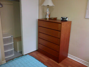 1 (of 2) Rooms in Beautiful Condo to Share (Preferably females)