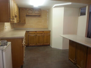Open, Attractive, New All-Incl. 2 BR, Pet Friendly Suite